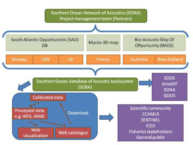 sona-network3